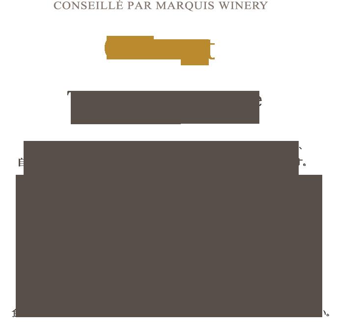 concept_1608